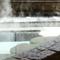 【素泊まり】天然温泉と日本庭園の癒しの旅◆箱根旅行の拠点に!≪全室Wi-Fi完備≫