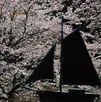 【庭の花桃・内湯の河津桜が見頃!(3/1現在)】オリジナルカクテル&リゾット付きのマル得花見プラン