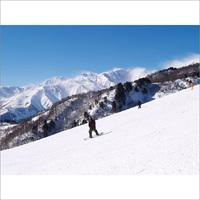 平日のスキー&スノボを楽しもう!!栂池高原スキー場のお得なリフト1日券付プラン(1泊2食付)