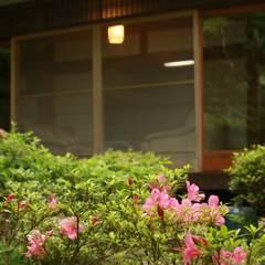 三田牛(神戸ビーフ)しゃぶしゃぶと小会席プラン