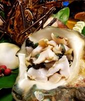 《朝夕2食付きプラン》オーナー漁師自慢の地魚お造りと女将の奄美郷土料理や海鮮イタリアン
