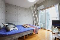 303号室 ロフト付きフローリング キッチン WIFI