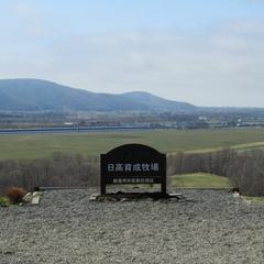 【特典付】馬産地ならでは!JRA日高育成牧場見学ツアーセットプラン《夕朝食付》