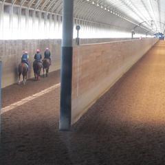 【特典付】馬産地ならでは!JRA日高育成牧場見学ツアーセットプラン《朝食付》
