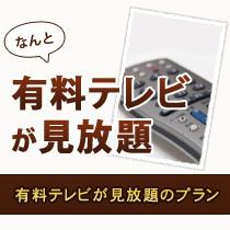 特定日限定!【でら安VOD見放題】ルームシアタープラン◆朝食無料サービス!!!!