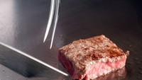 【スタンダード・鉄板焼き】目の前で「黒毛和牛」と「魅せる料理」を披露♪ 【当館人気】