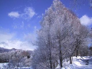 ペンション 白い雲・青い空