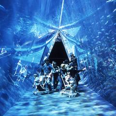 【アクアマリン編】子供も大人も楽しめる水族館♪このプランでご宿泊すると入場チケットをプレゼント♪