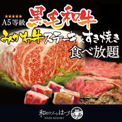 もう笑いが止まらない!A5みかわ牛 食べ放題プラン★1日6組限定価格(^O^)
