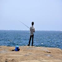 【水の国、わかやま。】【海釣り歓迎!釣竿&バケツ貸出OK】釣り三昧■釣りの後は温泉♪(足赤コース)