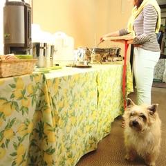 【4月 限定】大型犬〜小型犬まで!すべてのわんちゃん料金を1頭無料♪1泊2食付