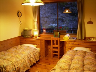 現金特価/温泉の湧き出る大塔川を眺める・洋室・ベッド