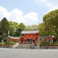 <夕食/お部屋食確約>【京料理会席・スタンダードプラン】新鮮な京都の伝統野菜と旬素材を活かした会席