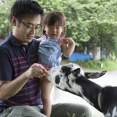 【お世話体験or引き馬体験プラン】ブラッシング・えさあげでお馬さんと友達♪小さなお子様歓迎!