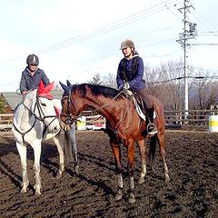 【乗馬体験付プラン】初心者でも安心♪30分の乗馬体験料込み!馬との触れ合いで心身をリフレッシュ
