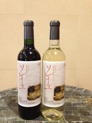 ★山梨県産地元ワイン★赤・白2本付き ご夫婦二人で造ったワインです♪