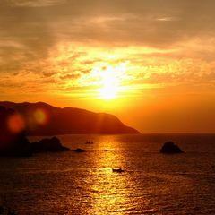 夏【WELCOME TO HYOGO】『 朝とれ白イカと夏かにいっぱい 』プラン【楽天限定】特典も