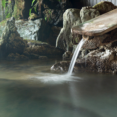 【ポイント10倍】【エスケーププラン】まったり、源泉掛け流し温泉お肌つるつる!「お先でスノ。」