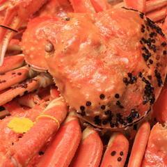 【献上大越前蟹2人で茹1杯】焼き・刺し・寿司・茹で・しゃぶ・雑炊♪