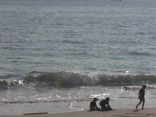 「目の前は海!」コロナ自粛疲れを海でリフレッシュ♪海までたったの5歩!会席プラン