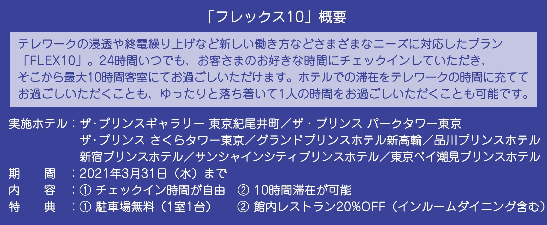 フレックス10詳細