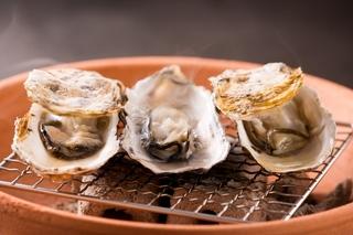 【3月までの冬季限定★】宮島牡蠣づくしプラン<有もと厳選の牡蠣料理4品>牡蠣が大好きなお客様の為に!