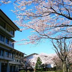 福島の春は見どころ満載! 花めぐりプラン