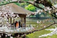 春爛漫♪大人のための奈良旅行【5大特典&2食付プラン】〜古都の奈良時間を食事と観光でゆったり堪能!〜