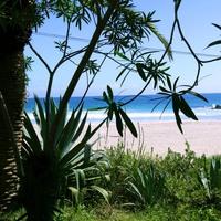 ◆素泊まり◆貸切風呂有★エメラルドグリーンに輝く海☆入田浜徒歩3分!伊豆下田をアクティブに楽しむ♪