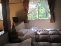 和室6畳・寝室ツイン窓の外の外は緑・緑