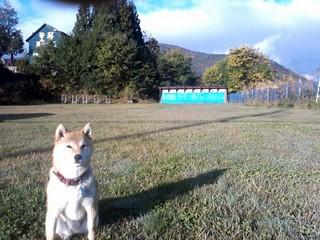 【お先でスノ。】【ペット同伴OK】愛犬と一緒に素敵な時間を過ごす・・・ペットと泊まれる♪1泊2食付