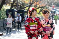 着物で京都の町を散策♪1泊朝食付きプラン【着付店まで徒歩5分】