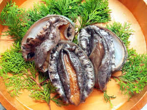 現金特価☆旬の舟盛り&あわびの踊り焼きor和牛ステーキを味わう!