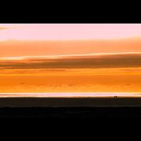 【★夏の海水浴プラン★】当館スタンダード◆旦那自慢の舟盛り◆【花火の特典付き♪】