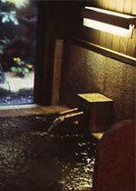 【アワビ・活イカ・但馬牛】と香住の美味しいもん満喫★夏のプレミアムコース★