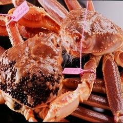 ☆カニ刺し付き松葉蟹フルコース