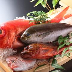 【海の幸堪能】新鮮獲れたてピッチピチ!伊豆・下田の豊かな恵みをお刺身で「季節の地魚♪姿造りプラン」