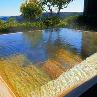【露天風呂付き客室】源泉かけ流しの庭園露天!お好きな時にお好きなだけ「極上の湯あみ 堪能プラン」