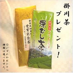 【掛川茶おみやげつきプラン】お茶の名産地推薦! 朝食付  ★4つ星以上