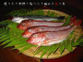 旬魚三昧!!あんこう鍋と旬魚 ファミリーリーズナブルプラン