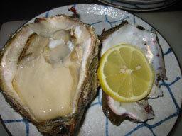 【料理自慢】海まで0分!特大絶品岩牡蠣&お刺身盛り合わせプラン