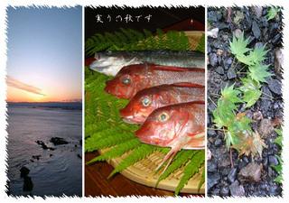 【ファミリー】【家族同室】【秋得、紅葉】海まで0分!!秋の旬魚づくし豪華刺し盛りプラン