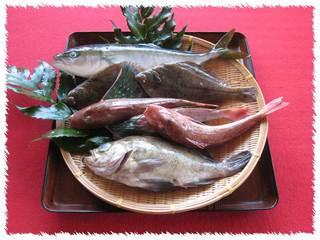 【秋得、紅葉】海まで0分!!秋の旬魚づくしサービスBプラン