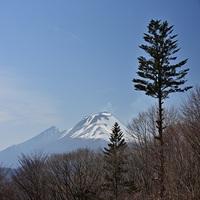 【直前割×Premium】東京から新幹線で2時間!プレミアムフレンチをお得に愉しむ【■グラン】