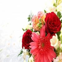 【記念日×Standard】ミニケーキ&ドリンクサービスで特別な日を演出【★ルミエール】