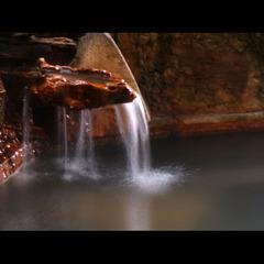 【期間限定・一日3組】春旅応援!1泊2食付で《平日1万円》ポッキリ!リーズナブルに天然温泉を満喫♪