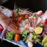 【4月・5月限定】瀬戸内で獲れた『春の桜鯛』づくし会席プラン