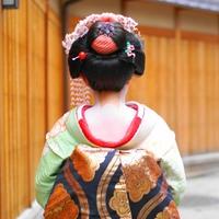 京都を華やかに♪舞妓さんとの夕べプラン【1泊2食】