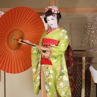 舞妓さん姿で記念フォト♪【着付け×着物セット】【1泊2食】
