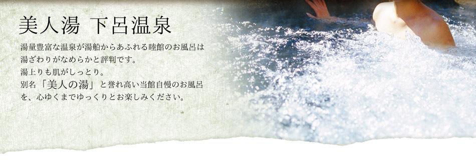 美人の湯 下呂温泉